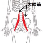 body_kokkaku_gaikotsu